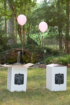 Walk with me by faith: Twins Gender Reveal!