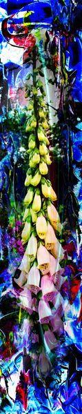 'Blütenträume 19' von Walter Zettl bei artflakes.com als Poster oder Kunstdruck $22.17