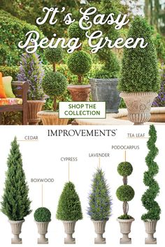 Topiary No watering or pruning! Add gorgeous greenery to your indoor or outdoor living space without the work. Choose the best lifelike topiary for your needs. Mix and match for a customized look, and don't forget the decorative urn! Topiary Garden, Topiary Trees, Porch Topiary, Porch Urns, Front Porch Planters, Outdoor Topiary, Boxwood Garden, Boxwood Hedge, Boxwood Topiary