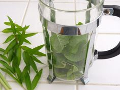 Best Lemon Verbena Tea Or 4 Fresh Lemon Verbena Recipe on Pinterest