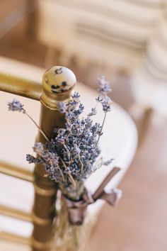 An intimate wintry Washington DC wedding at Josephine Butler Parks Center with a morning Jewish wedding ceremony and breakfast bar reception. Butler House, Jewish Wedding Ceremony, Washington Dc Wedding, Dc Weddings, Ceremony Decorations, Best Day Ever, Summer Recipes, Barefoot, Flower Power