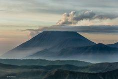 Volcano Semeru (background) - Bromo Tengger Semeru National Park, Java Indonesiaby Phil Marion