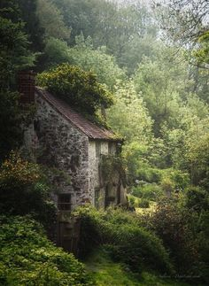 Cottage In The Woods, House In The Woods, Landscape Photography, Nature Photography, House Photography, Digital Photography, Photography Ideas, Stone Cottages, Stone Houses