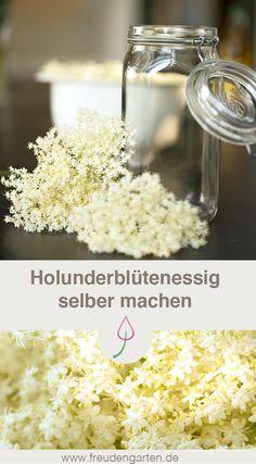 Essig mit Holunderblüten aromatisieren und einen leckeren Essig selber machen. Holunderblütenessig ist zudem sehr gesund. #Kräuter #Essig #Rezept 'DIY