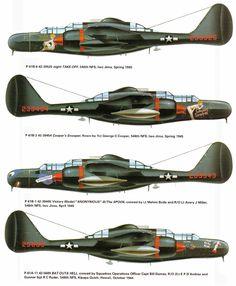Northrop P 61