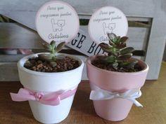 Souvenirs realizados a pedido para cumpleaños de Catalina 1 año.  Haworthia fasciata,  Aeonium haworthii , crassula ovata y graptosedum bronce