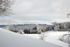 Free Image on Pixabay - Winter, Scene, Mountain, Wonderland New Years Background, Background Images, Free Pictures, Free Images, Stations De Ski, New Year Images, Winter Scenes, Holiday Destinations, Alps