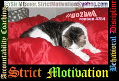 whether the day was peaceful or stressful, #go2bed grateful #StrictMotivation Strict Motivation offers help reaching your worthy life goals, through working, goal oriented real life coaching, Easil…