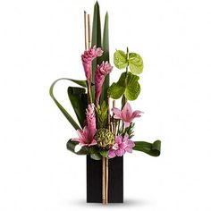 Contemporary and modern flower arrangements using tropical flowers Tropical Flowers, Tropical Flower Arrangements, Exotic Flowers, Fresh Flowers, Beautiful Flowers, Cactus Flower, Large Flowers, Purple Flowers, Ginger Lily