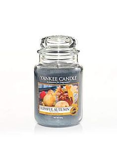 Yankee Candle Large jar blissful autumn scented candle | Is this scent new, or discontinued? I've never seen it!