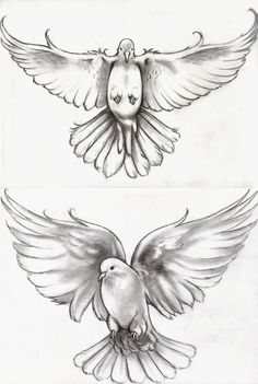 Tattoo Doves by can find Dove tattoos and more on our website.Tattoo Doves by Dove Tattoos, New Tattoos, Body Art Tattoos, Tattoos For Guys, Celtic Tattoos, Chest Tattoo, Arm Tattoo, Sleeve Tattoos, Tattoo Bird