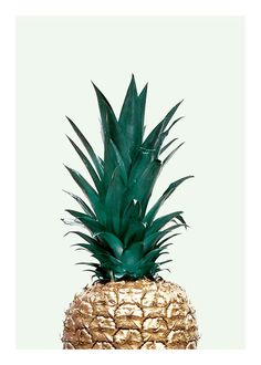 Green pineapple, poster