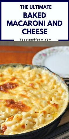 True comfort in a skillet. Baked macaroni and cheese is perfect for a weeknight dinner or holiday gathering. True comfort in a skillet. Baked macaroni and cheese is perfect for a weeknight dinner or holiday gathering. Best Macaroni And Cheese, Macaroni Cheese Recipes, Creamy Mac And Cheese, Mac And Cheese Homemade, Mac And Cheese Casserole, Skillet Mac And Cheese, Colby Jack Mac And Cheese Recipe, Mary Berry Macaroni Cheese, Crock Pot Recipes