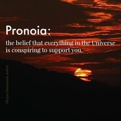 Pronoia: the belief that everything in the universe is conspiring to support you. #synchronicity
