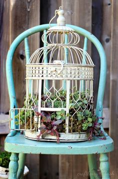 Creative DIY Garden Containers and Planters from Recycled Materials --> Turn an unused or older bird cage into an awesome succulent planter!