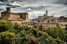 Hill of Siena by Mathieu Maré on 500px