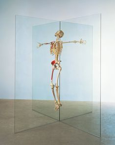 Damien Hirst  Resurrection, 1998 - 2003