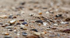 IMG_4462  | #warm #cool #grey #beige #brown  #gold #ivory
