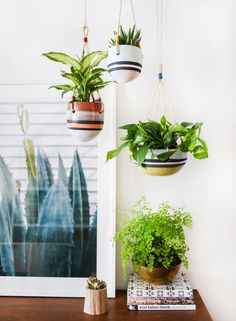 Image Via: Amber Interiors featuring the Tigris Hanging Garden Pots #Anthropologie