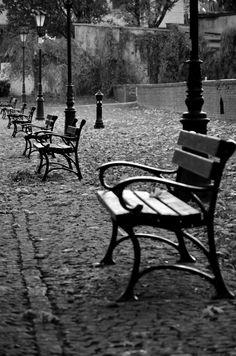 Poland. Poznan, Chopin's Park.