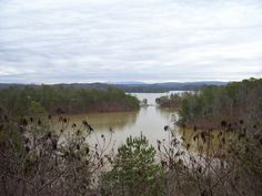 Carter's Lake, near Chatsworth, GA - Just 15 miles from where I live.