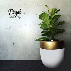 Lightweight planters dipped in many colors | Like this white with gold stripe. Good DIY project with any color combo.