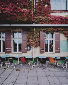 #autumnisokay #Berlin by berlinstagram