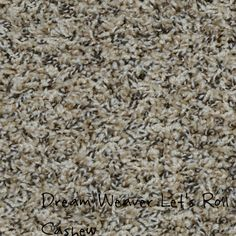 Dream Weaver Let's Roll, Cashew solution dyed BCF polyester carpet.