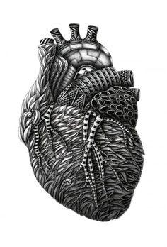 Alex Konahin Heart Coeur Illustration 500x738 Illustration / Dessine nous ton anatomie...