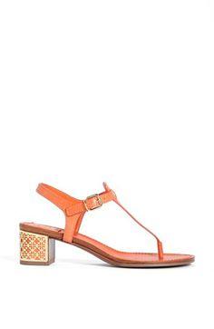 orange tory