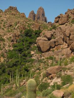 Weaver's Needle, a prominent rock formation in Superstition Wilderness, near Phoenix, AZ. Hiked 9 miles in the desert heat but it was awesome :)