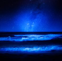 View of the Milky Way from a beach.