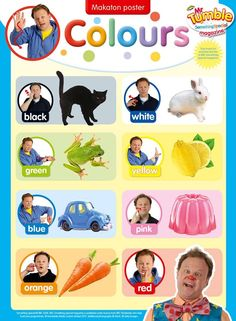 Colours Sign Language Games, Irish Sign Language, Sign Language For Kids, American Sign Language, Makaton Printables, Makaton Signs British, Games For Toddlers, Toddler Games, Colourful Semantics