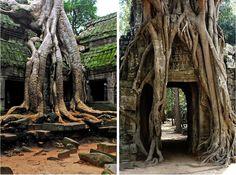 AD-Angkor Wat, Cambodia