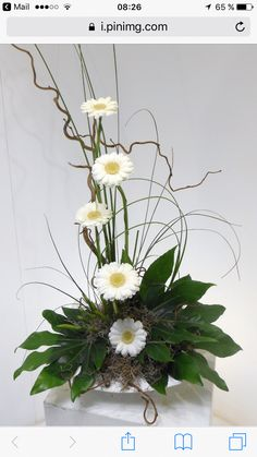 -super Decoracion: Moderne Blumenarrangements Anstecknadel Von Elize Malan In Blomme Decoracio.- super Decoracion: Moderne Blumenarrangements Anstecknadel Von Elize Malan In Blomme Decoracion Pläne Künstliche Moderne Blumenarrangements Mit <br Contemporary Flower Arrangements, Creative Flower Arrangements, White Flower Arrangements, Arrangements Ikebana, Ikebana Flower Arrangement, Altar Flowers, Church Flowers, Flowers Garden, Unusual Flowers
