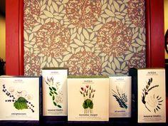 Aveda Skin Care Starter Kits Aveda Skin Care, J Thomas, Starter Kit, Aveda Products, Hair Care, Decorative Boxes, Frame, Skincare, Anti Aging