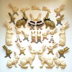 An assortment of bunny rabbits!
