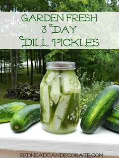 Garden Fresh Easy Refrigerator Dill Pickle Recipe…they last 6 weeks in the fridge!