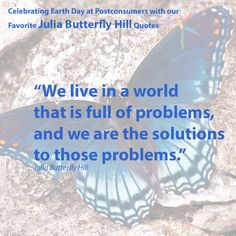 Favorite Julia Butterfly Hill Quotes: We Are the Solutions - Postconsumers Earth Day Quotes, Notting Hill Quotes, Favorite Quotes, Environment, Butterfly, Live, Bowties, Butterflies, Environmental Psychology