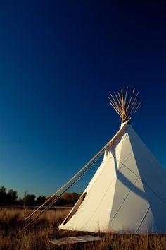 21' teepee we are putting in our yard on the West side amongst the trees for the boys to play in and camp outs.