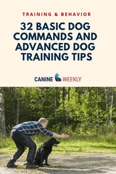 Ultimate Dog Training Commands List (Common to Advanced!) Ultimate Dog Training Commands List (Common to Advanced!),Dog Training Tips If you are serious about teaching your dog commands, you'll likely find that you want to. Service Dog Training, Dog Training Treats, Puppy Training Tips, Training Your Puppy, Brain Training, Service Dogs, Training Classes, Training Videos, Training Academy