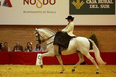 SICAB, AMAZONA, SPANISH SIDE SADDLE, HORSES, CABALLOS, ESTILO DE VIDA, LIFESTYLE.jpg