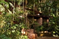 Turismo ecologico en la selva: Turismo ecologico en la selva. Eco Lodge, Argentina