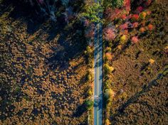   Rhode Island, USA   Got time to drive around? Explore some of our scenic driving routes, such as Route 100 in Blackstone Valley, Ocean Drive in Newport or Ocean Road in Narragansett, to name a few!   mikey__z_  #RhodeIsland #VisitRhodeIsland #RhodeTrip #OnTheRhode #Newport #FallTravel
