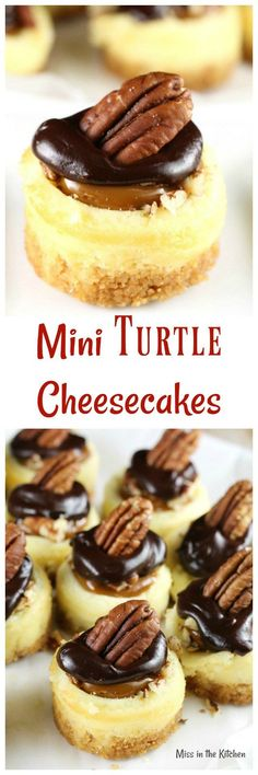 Mini Turtle Cheeseca