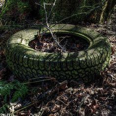 Does having green tyres reduce your carbon footprint? #jj_urbex #g_s_i_member #grime_lords #froggy_explorers #kings_abandoned #tour_through_desolation #urbex_apocalypse #total_abandoned #igw_details #rsa_preciousjunk #all_is_abandoned #bpa_urbex #ic_urbex #ig_abandoned #abandoned_junkies #abandonment_issues #abandonedafterdark #the_relics #sfx_decay #urbxtreme #showmethatgrime #exploring_shots #sombrexplore #urbex_supreme #fd_members #abandoned_excellence #infinity_unguarded…