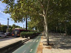 "Hadrianus Twitter'da: ""Buyrun insan odakli sehircilik! Sagdan sola sirayla: Yaya yolu,bisiklet yolu,otobüs&taksi yolu ve araba yolu #Sevilla http://t.co/XRYN4Y1dWQ"""