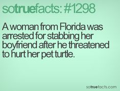 A woman from Florida was arrested for stabbing her boyfriend after he threatened to hurt her pet turtle.