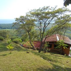 House sitting job - Matapalo, Savegre, Costa Rica - Image 1