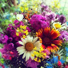 Summer flowers / Nyári virágcsokor